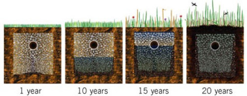 Septic Field Bed Over Time